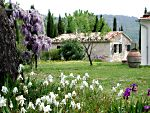 farm holidays near the warm water spa in Saturnia - Maremma - Tuscany